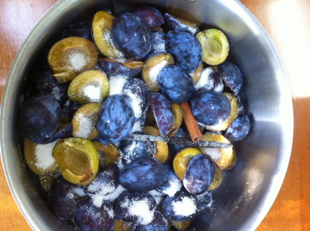 Italian prune plums, halved & ready to cook down into a plum sauce
