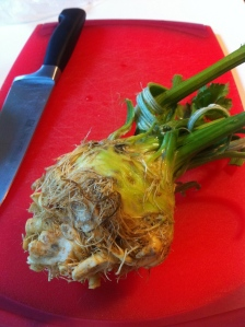 The world's ugliest root. But quite tasty!