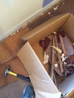 Box o' carpet tack strips. Filled two HUGE boxes with these sharp buggers.